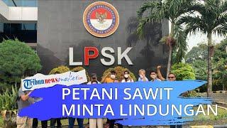 Sejumlah Petani Datangi LPSK di Jakarta, Minta Perlindungan terkait Sengketa Lahan di Kampar Riau
