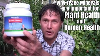 Why Trace Minerals Are Important For Human & Plant Health