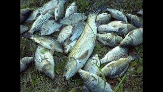 Озер для рыбалки в калужской области