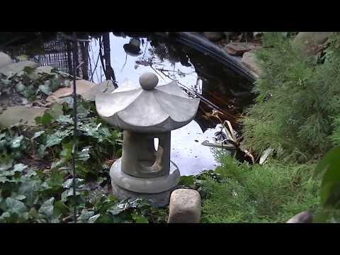 Piedra toro. Chino de piedra, linternas japonesas de hormigón.