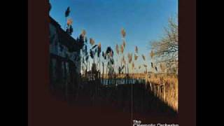 The Cinematic Orchestra - To Build A Home, That Home