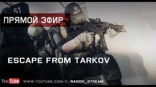 Escape From Tarkov - Типа с др. Stream by Raidok #235.