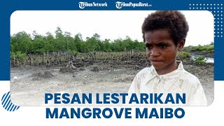 Kepala Kampung Maibo Minta Warga Tak Rusak Kawasan Mangrove: Demi Anak Cucu Kita