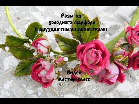 Цветы для дома женское счастье