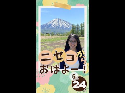 【桜】北海道ニセコからおはよー!<2021年5月24日>|毎週月曜朝8時、ニセコから元気をお届け!