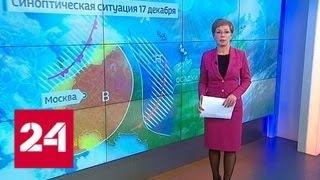 """""""Погода 24"""": по Европейской России ударил мороз - Россия 24"""