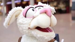 Schafe Promotion (Pepe das Schaf) Roboterschaf