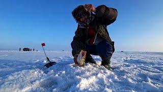 Спасоклинское озеро рыбалка