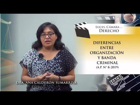DIFERENCIAS ENTRE ORGANIZACIÓN Y BANDA CRIMINAL (A.P. 8-2019) - Luces Cámara Derecho 155