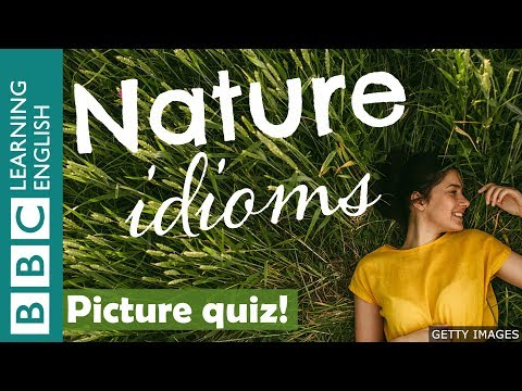 Download A picture quiz about English idioms: Nature Mp4 HD Video and MP3