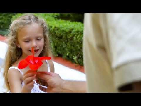 Отдых в Турции с детьми в люкс отелях. Лучшие варианты дня для семейных туристов.