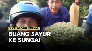Viral Video Aksi Protes Petani, Buang Sayur dan Bagi-bagi Sayur ke Pengendara yang Lewat
