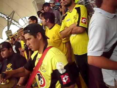 """""""***ULTRA**KANARIA"""" Barra: Ultra Kanaria • Club: San Luis de Quillota"""