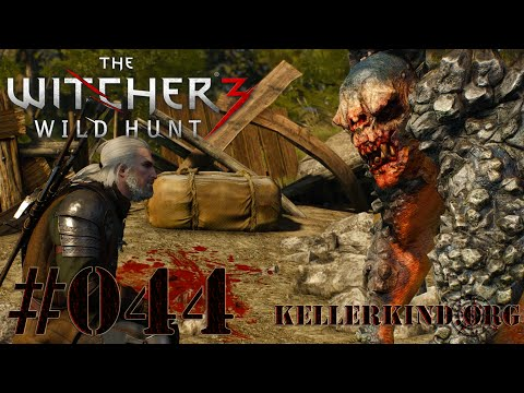 The Witcher 3 [HD|60FPS] #044 Montagsmaler ★ Let's Play The Witcher 3