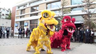 preview picture of video 'Danse des Dragons'