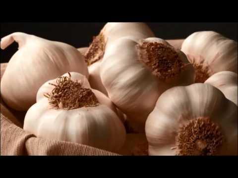 แก้ไข homeopathic สำหรับ Giardia