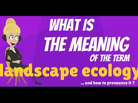What is LANDSCAPE ECOLOGY? What does LANDSCAPE ECOLOGY mean?