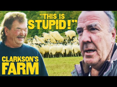 """, title : 'Jeremy's """"Disobedient"""" Sheep Provide Gerald With Some Work   Clarkson's Farm   Prime Video"""