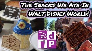 The Snacks We Ate In Walt Disney World | Disney Dining Plan