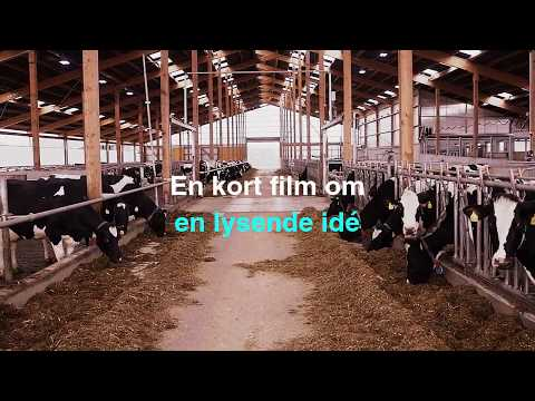 DeLaval LED Fjøsbelysning  - film på YouTube