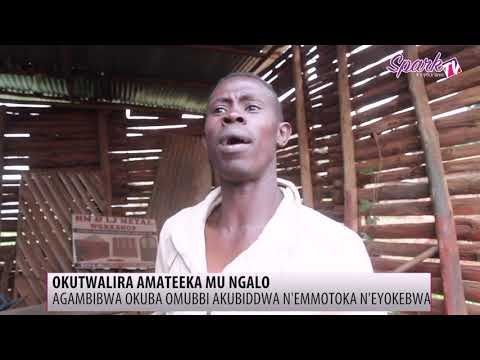 Okutwalira amateeka mu ngalo e Naluvule mu Wakiso n'e Mityana
