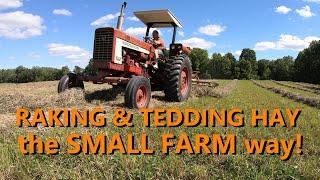 the basics of raking & tedding hay