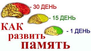 Как быстро улучшить память? Унай, как запоминать больше | Я знаю
