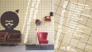 PETE ROCK   THE SURVIVING ELEMENTS (full Album) [HQ]