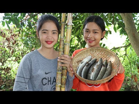 Awesome Cooking Sugarcane With Fish Deliciuos Recipe – Cook Fish Recipes – Village Food Factory