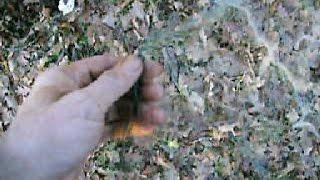 Как поймать куропатку без ружья зимой