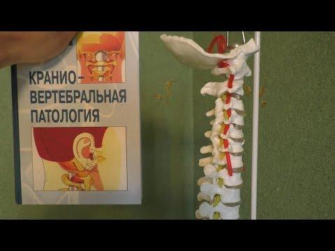 Санатории в ялте для лечения позвоночника