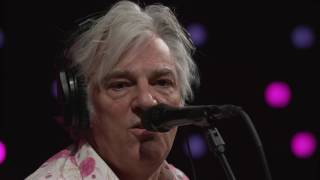 Robyn Hitchcock - Virginia Woolf (Live on KEXP)