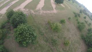 Dji fpv iflight dc2 with Arrma Mojave