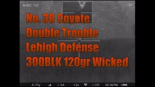 No 38 Coyote Double Trouble Lehigh Defense 300BLK 120gr Wicked FTM Bullet Pulsar Trail XP38