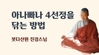 아나빠나 4선정을 닦는방법 (2015년 8월 16일)