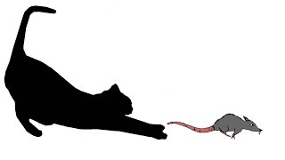 CAT GAMES - RAT TAIL BANDIT (FOR CATS ONLY)