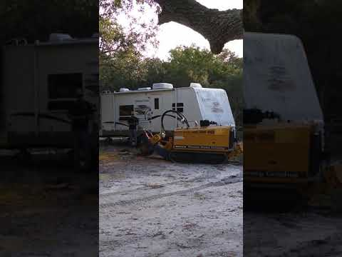 Wrightsville Beach Stump Grinding Same Day Service Call 910-467-8369