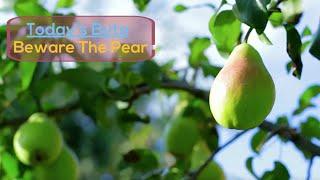 Beware The Pear