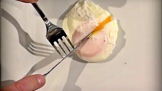 Jajko w koszulce kontra Masterchef [ Masterchef ]