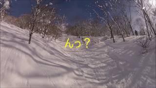 白馬コルチナスキー場 2017.02.03 板平林間コース自己責任エリア①