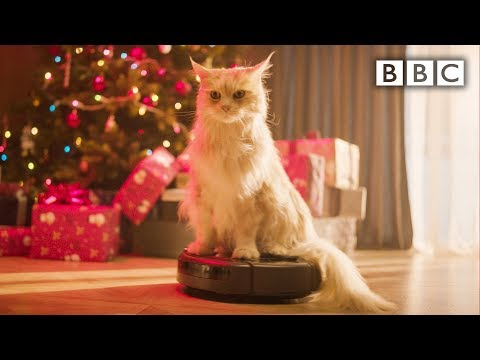The BBC has a Christmas themed lifestream running with a cat on a Roomba.