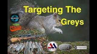 Squirrel Control With The Air Arms & Team Foxer