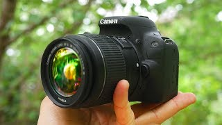 BEST Beginner DSLR Camera 2020!