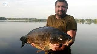 Carp Lake Gosławice Poland  Carp Fishing  Fishery Gosławice  Fischerei Gosławice
