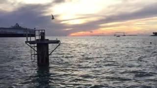 Colour of the Sun - Jimmy Buffett