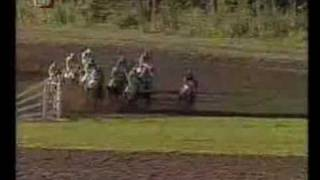 preview picture of video '113. GRAND STEEPLECHASE PARDUBICE 2003'