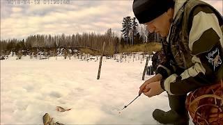 Ловля леща зимой на карьере