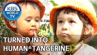 Turned into human-tangerine after eating tangerine! [The Return of Superman/2019.12.15]