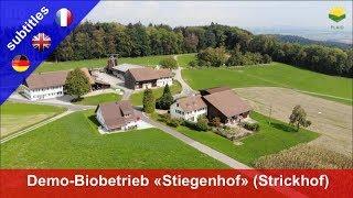 "he new organic demo farm ""Stiegenhof"" at the Strickhof agricultural school"