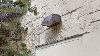 video: GeoPak LED Wallpack